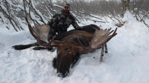 moose hunting kamchatka